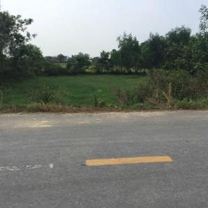 Bán gấp đất bán Long An thổ cư ngay mặt tiền đường Ba Sa Gò Mối DT 32*45 m2